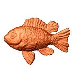 Aquarium fish file stl free vector art 3d model download for CNC