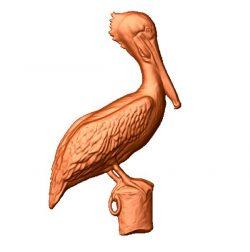 Pelican file stl free vector art 3d model download for CNC