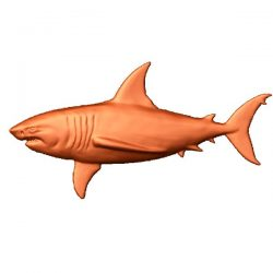 Shark file stl free vector art 3d model download for CNC