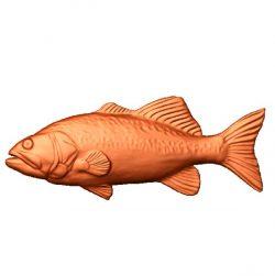tuna fish file stl free vector art 3d model download for CNC