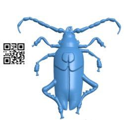 Beetle A002782 wood carving file stl for Artcam and Aspire jdpaint free vector art 3d model download for CNC