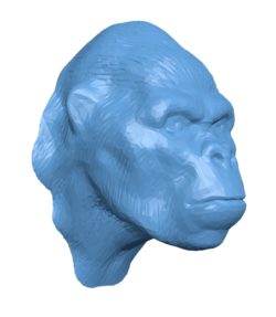Gorilla Head B002909 file stl free download 3D Model for CNC and 3d printer