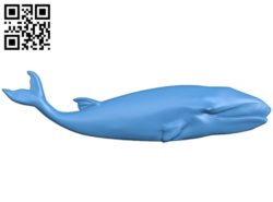 The fish – blue whale A003587 wood carving file stl for Artcam and Aspire free art 3d model download for CNC