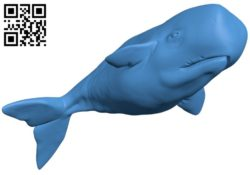 Ballena – fish B005137 file stl free download 3D Model for CNC and 3d printer