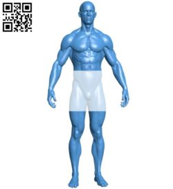 Muscular man B005880 download free stl files 3d model for 3d printer and CNC carving