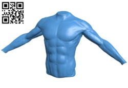 Torso of athlete B006613 file stl free download 3D Model for CNC and 3d printer