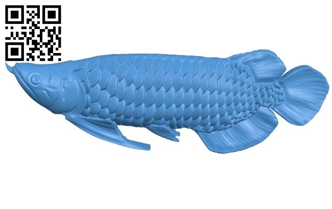 Arowana - fish B006922 file stl free download 3D Model for CNC and 3d printer