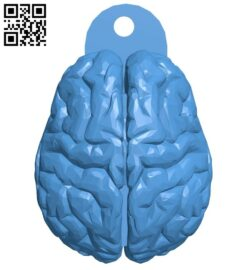 Brain hook B007345 file stl free download 3D Model for CNC and 3d printer