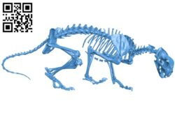 Mountain lion skeleton B007297 file stl free download 3D Model for CNC and 3d printer