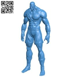 Mr Sagat B007308 file stl free download 3D Model for CNC and 3d printer