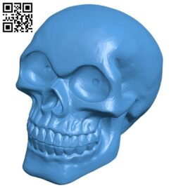 Skull TMS B007305 file stl free download 3D Model for CNC and 3d printer