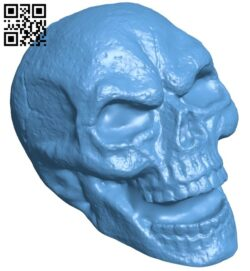 Skull hollow B008171 file stl free download 3D Model for CNC and 3d printer