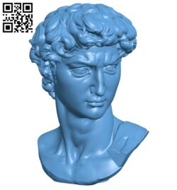 Head of Michelangelo's David B008757 file obj free download 3D Model for CNC and 3d printer