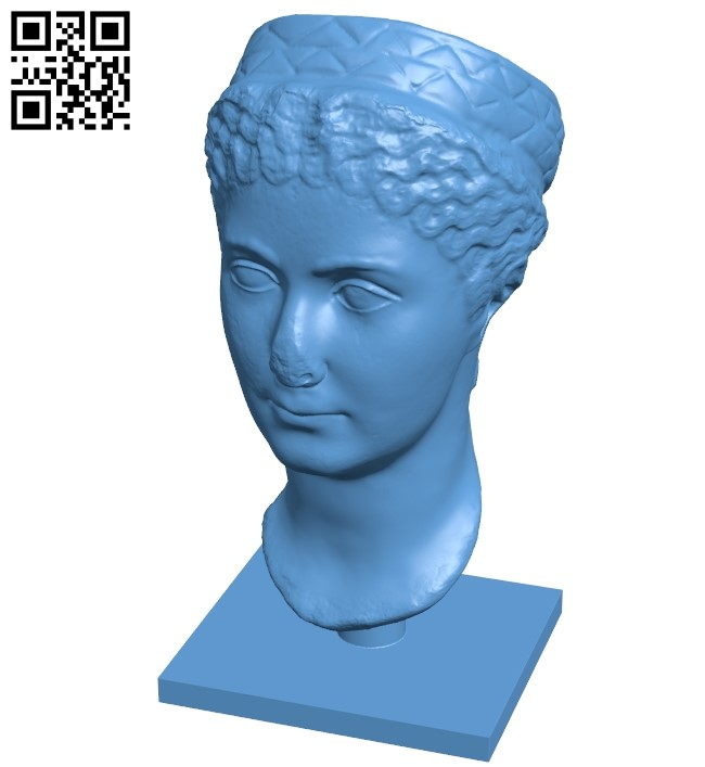 Met matidia minor - head B008937 file obj free download 3D Model for CNC and 3d printer