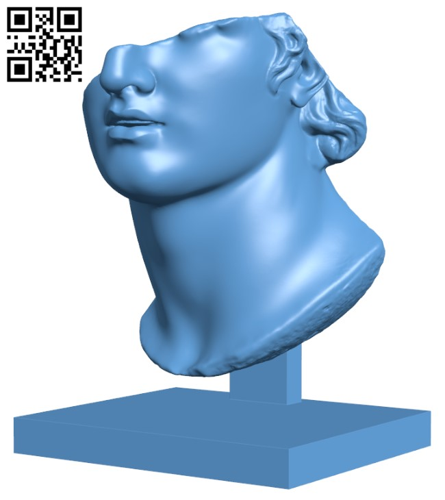 Fragmentary Colossal Head of a Youth H000277 file stl free download 3D Model for CNC and 3d printer