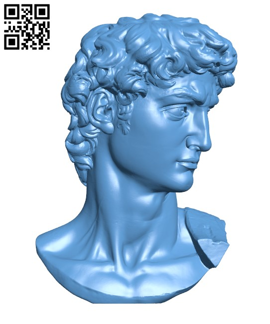 Head of Michelangelo's David H000095 file stl free download 3D Model for CNC and 3d printer