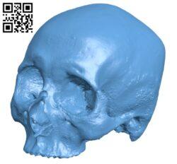 Human skull H000342 file stl free download 3D Model for CNC and 3d printer