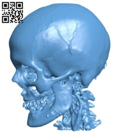 Head H000704 file stl free download 3D Model for CNC and 3d printer
